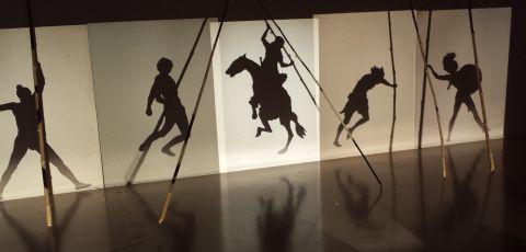 In het Instituut voor hedendaagse kunst deden ze iets met schaduw.